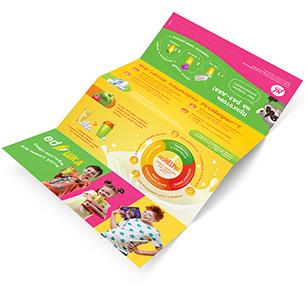 EDshka leaflet (10 pieces)